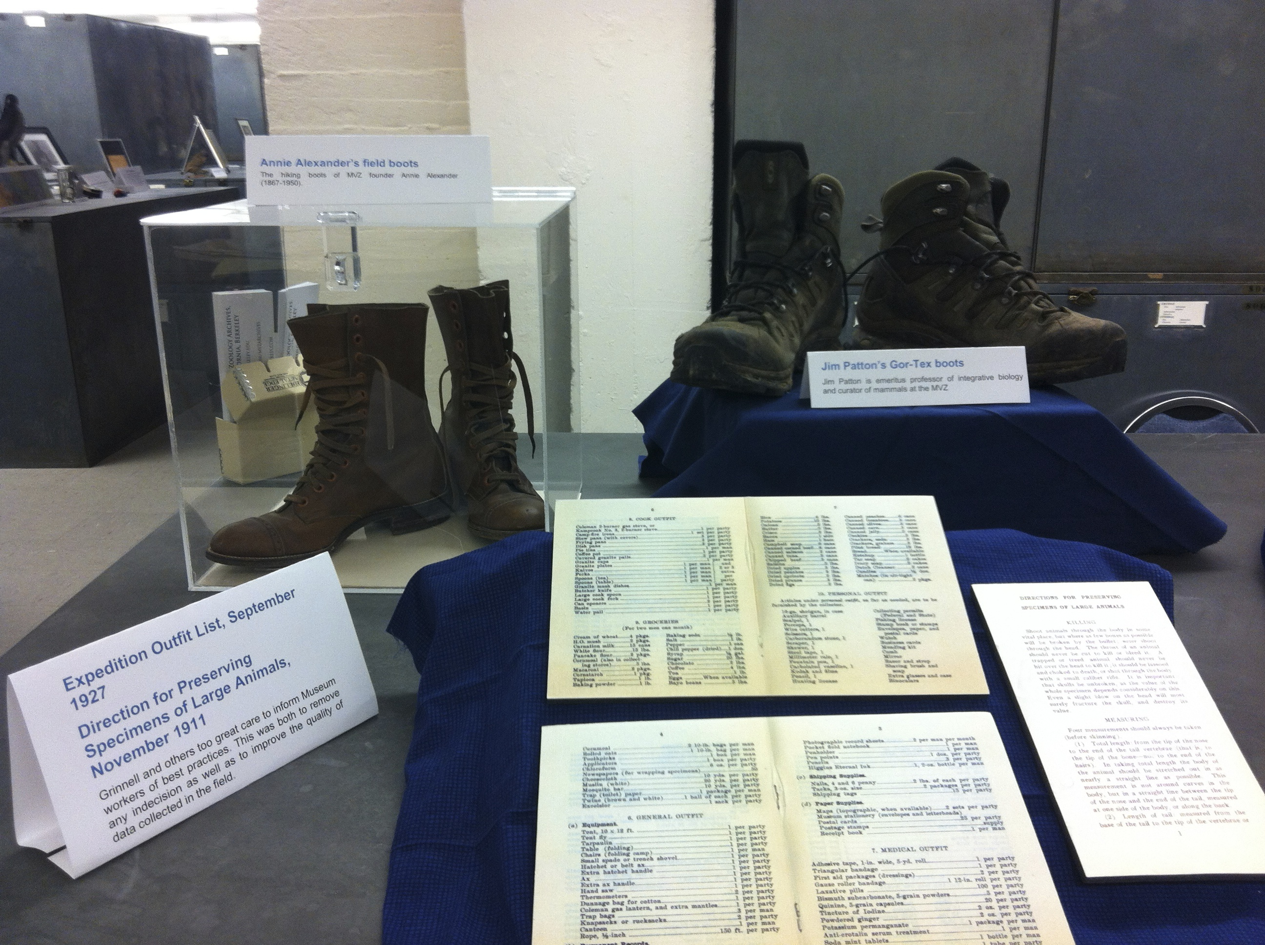 """Annie Alexander's hiking boots and the hiking boots of Jim Patton, emeritus professor of integrative biology and curator of mammals at the MVZ, sit at the back of the display. An expedition outfit list from 1927 and a page from 1911's """"Direction for Preserving Specimens of Large Mammals"""" are displayed in the foreground."""
