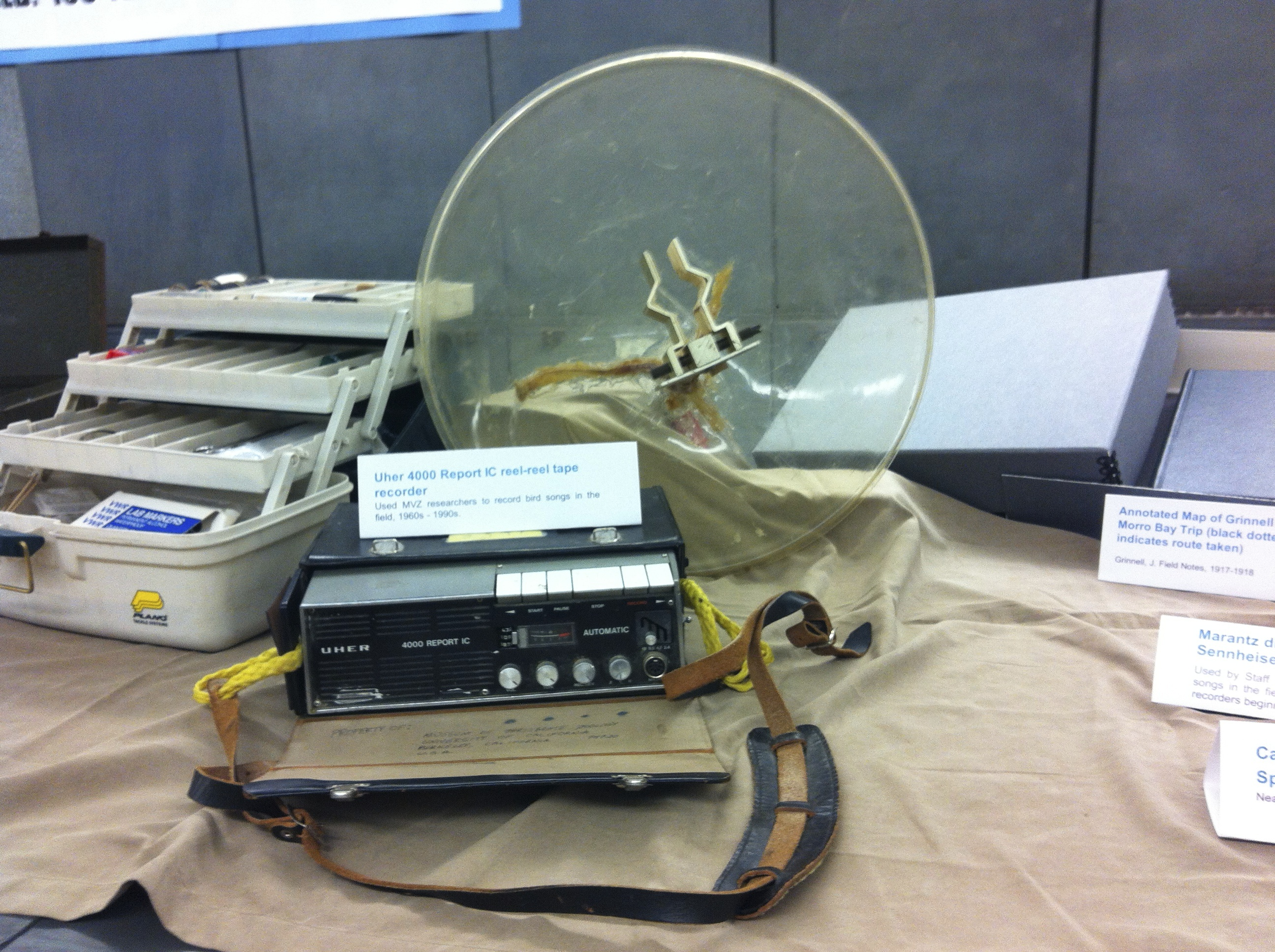 A Uher 4000 Report IC reel-reel tape recorder, used by MVZ researchers to record bird songs in the field from the 1960s to the 1990s.