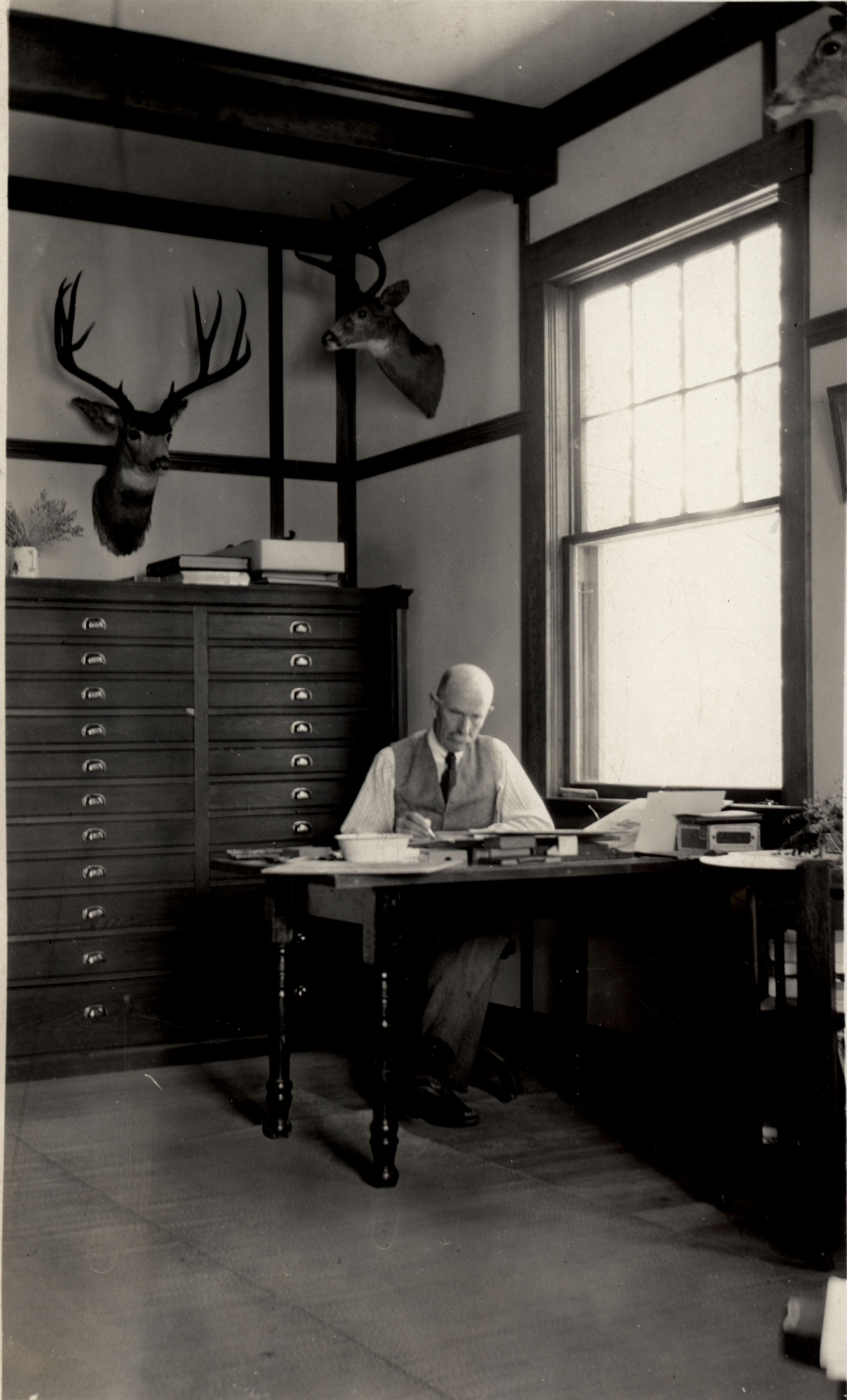 Allan Brooks, Okanagan Landing, British Columbia, October 7, 1921, by H.S. Swarth. MVZ Image 3742.