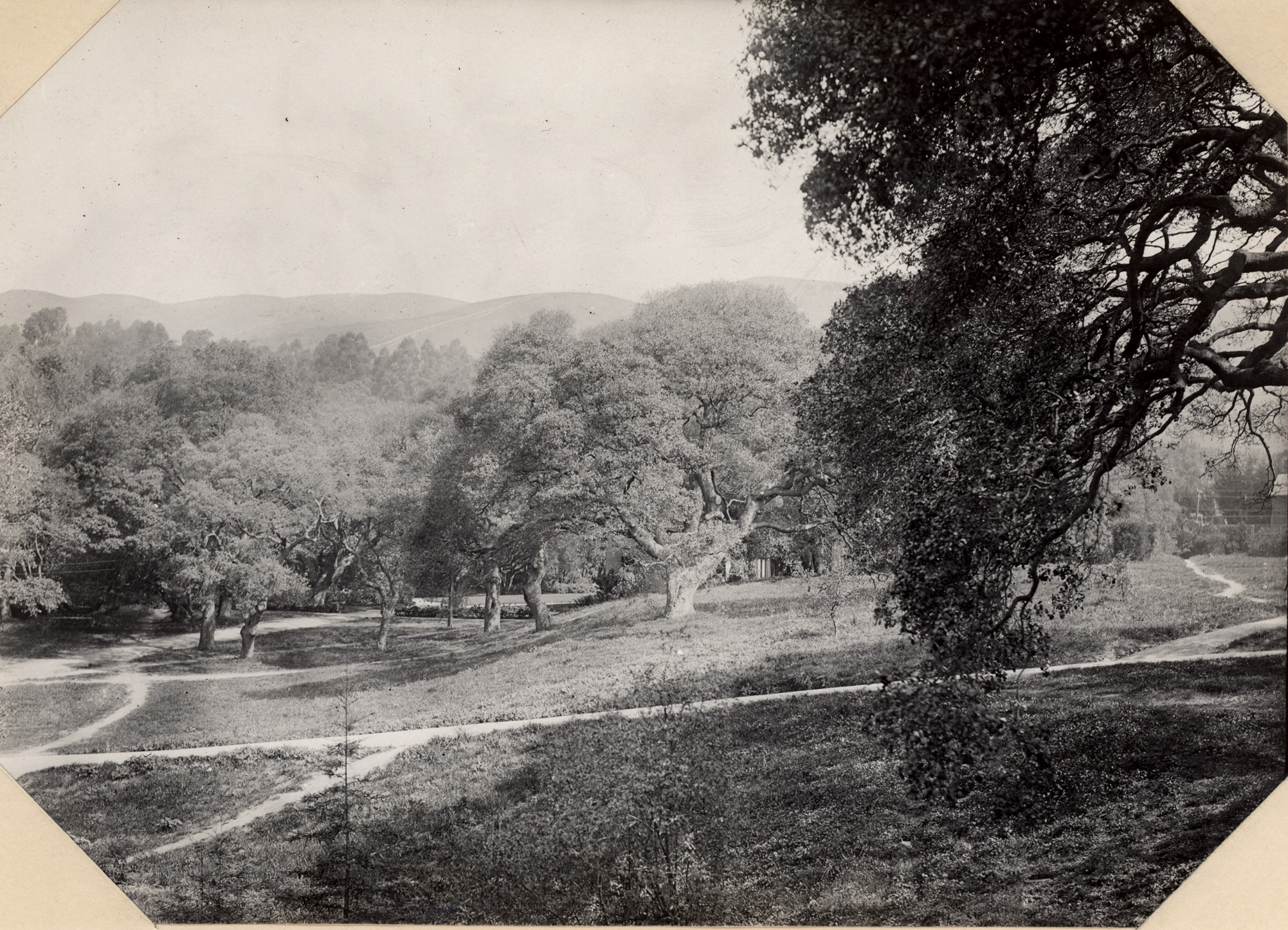 View of UC Berkeley Campus, ca. 1910